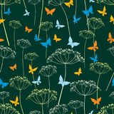 Bezszwowy tło motyle i umbellate rośliny Obraz Stock