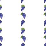 Bezszwowy tło wzór błękitni winogrona Obrazy Stock