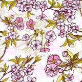 Bezszwowy tło wzór z kwitnąć Sakura royalty ilustracja