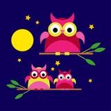 Bezszwowy tło z dekoracyjnymi sowami spacerować w nocy Fotografia Stock