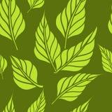 Bezszwowy tło z liśćmi. Wektorowy illustration/Eps 8 Zdjęcia Stock