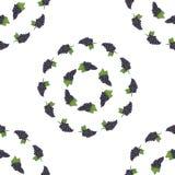 Bezszwowy tło wzór czarni winogrona Obrazy Royalty Free