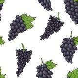 Bezszwowy tło wzór czarni winogrona Obraz Stock