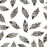 Bezszwowy tło wzór z abstrakcjonistycznymi piórkami Obraz Royalty Free