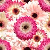 Bezszwowy tło z gerbera kwiatami Zdjęcia Stock