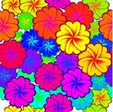 Bezszwowy tło z stubarwnymi kwiatami Fotografia Royalty Free