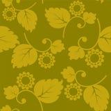 Bezszwowy tekstura rocznik z kwiatami Obraz Stock