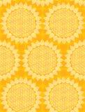 bezszwowy tkaniny słońce Zdjęcie Stock