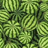 Bezszwowy tło z zielonymi arbuzami również zwrócić corel ilustracji wektora Obraz Stock