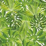 Bezszwowy tropikalny liścia wzór z zielonymi palmowymi gałąź w nakreślenie stylu ilustracja wektor