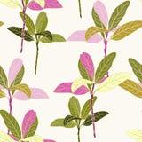 Bezszwowy tropikalny zieleni i menchii liści wzór na jasnożółtym tle royalty ilustracja