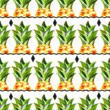 Bezszwowy wektorowy ananasa wzór Zdjęcie Stock
