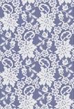 Bezszwowy Wektorowy biel koronki wzór Zdjęcie Royalty Free