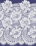 Bezszwowy Wektorowy biel koronki wzór Obraz Stock