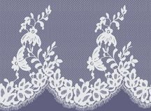 Bezszwowy Wektorowy biel koronki wzór Zdjęcia Stock