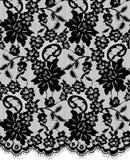Bezszwowy Wektorowy czerni koronki wzór Obraz Royalty Free