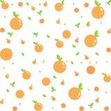 Bezszwowy wektorowy pomarańczowy owoc wzór Wektor, ilustracja zdjęcia royalty free