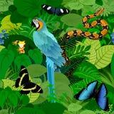 Bezszwowy wektorowy tropikalny tropikalny las deszczowy dżungli tło z papugą, pytonem i motylami aronu makaw, ilustracja wektor