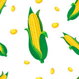 Bezszwowy wektoru wzór: kukurudza Obrazy Stock