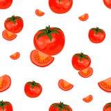 Bezszwowy wektoru wzór: pomidor Obrazy Stock
