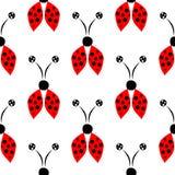 Bezszwowy wektoru wzór z insektami, symetryczny tło z czerwona ręka rysować dekoracyjnymi biedronkami na białym tle ilustracja wektor