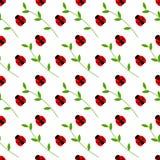 Bezszwowy wektoru wzór z insektami, symetryczny tło z jaskrawymi małymi biedronkami i gałąź z liśćmi na białych półdupkach, Zdjęcia Royalty Free
