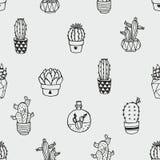 Bezszwowy wektoru wzór z kaktusem odizolowywającym na szarym tle ilustracji