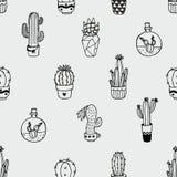 Bezszwowy wektoru wzór z kaktusem odizolowywającym na szarym tle royalty ilustracja