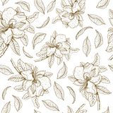 Bezszwowy wektoru wzór z magnolią i liśćmi Botaniczna ilustracja ilustracja wektor