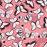 Bezszwowy wektoru wzór z ręka rysującymi kolorowymi motylami, różowy tło Fotografia Stock