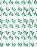 Bezszwowy wektoru wzór z zielonymi liśćmi Obrazy Stock