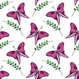 Bezszwowy wektoru wzór z insektami, kolorowy tło z fiołkowymi motylami i gałąź z liśćmi om biały tło Obraz Stock