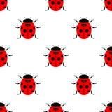 Bezszwowy wektoru wzór z insektami, symetryczny lakoniczny tło z jaskrawymi biedronkami nad białym tłem, Obrazy Royalty Free