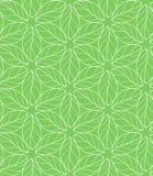 Bezszwowy wielostrzałowy liniowy liścia wzór Zdjęcie Royalty Free