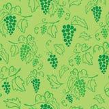 Bezszwowy winogrono zieleni wzór Fotografia Royalty Free