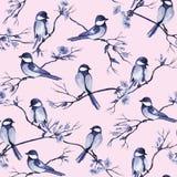 Bezszwowy wzór z akwarela ptakami siedzi gałąź z kwiatami na royalty ilustracja