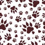 Bezszwowy wzór ślada psie ` s łapy Vektor Zdjęcie Stock