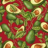 Bezszwowy wzór świezi avocados ilustracji