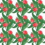 Bezszwowy wzór Zdjęcie Royalty Free