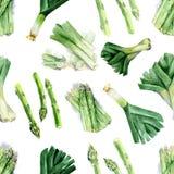 Bezszwowy wzór akwarela rysunki karczochy, asparagus Obrazy Stock