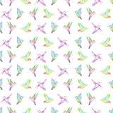 Bezszwowy wzór akwareli colibri Obraz Royalty Free