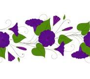 Bezszwowy wzór błękitny powój Girlanda z bindweed kwiatami Chwała elegancki ornament kwiecista niekończący się granica ilustracja wektor
