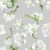 Bezszwowy wzór białe róże i frezja ilustracja wektor