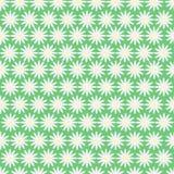 Bezszwowy wzór biali kwiaty Fotografia Royalty Free