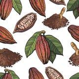 Bezszwowy wzór cacao owoc, fasole, proszek na białym tle royalty ilustracja