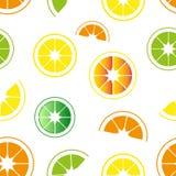 Bezszwowy wzór cytrusy, pomarańcze, cytryny i wapno, royalty ilustracja