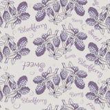 Bezszwowy wzór czernica z gałąź i liśćmi Obraz Royalty Free