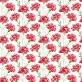 Bezszwowy wzór czerwoni akwarela goździki Obrazy Royalty Free
