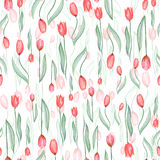 Bezszwowy wzór czerwoni tulipany Obrazy Stock
