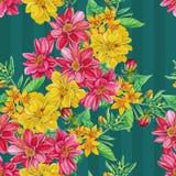 Bezszwowy wzór dalia kwitnie z liśćmi i Obrazy Stock